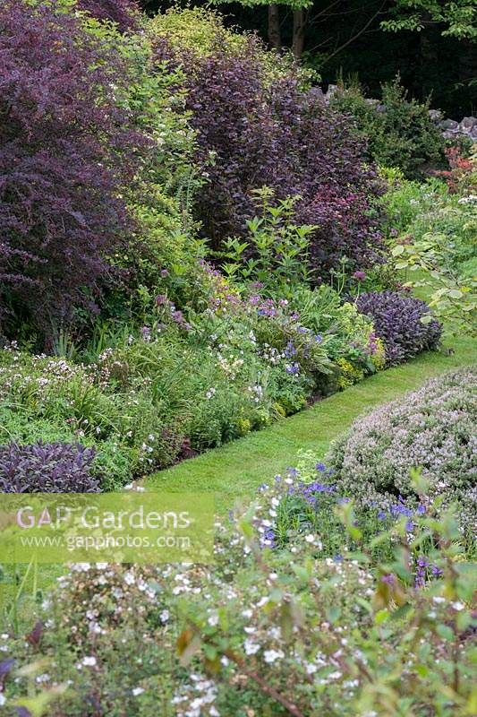 Long terraced borders of flowering perennials and shrubs with grass pathway.