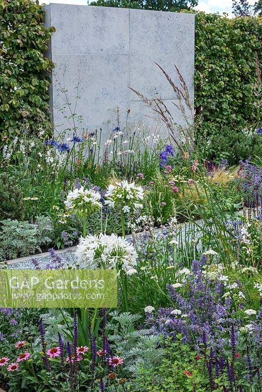 Borders of nectar rich flowers including Agapanthus, Nepeta, Echinacea, Salvias and Gaura