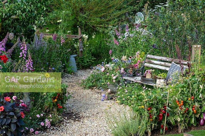 Cottage garden with gravel path winding through relaxed borders of vegetables and flowers. A rustic bench nestles into the planting. BBC Springwatch Garden, designed by Jo Thompson. RHS Hampton Court Palace Garden Festival, 2019.