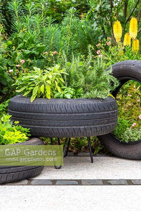 Tyre planters with mixed herbs