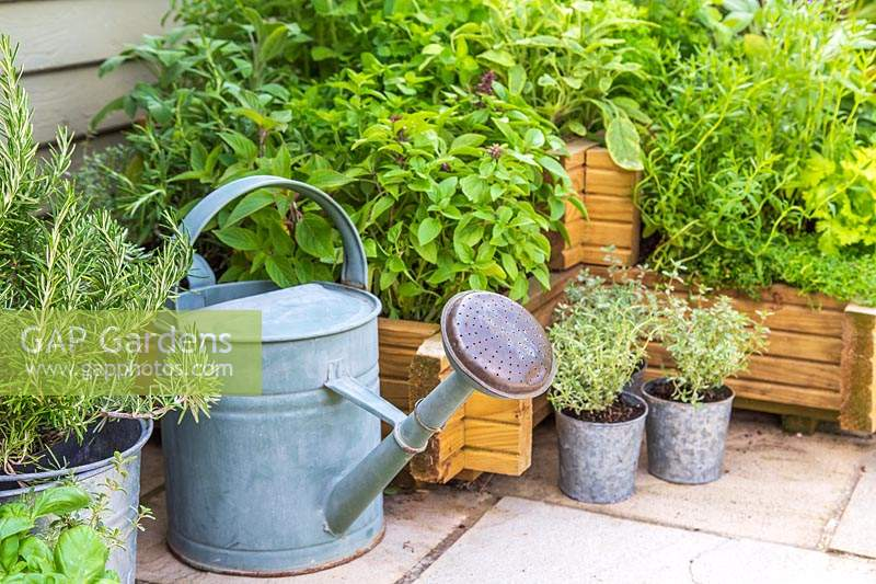 Raised wooden planter with mixed herbs and watering can