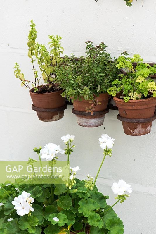 Wall hanging planter with terracotta pots planted with herbs