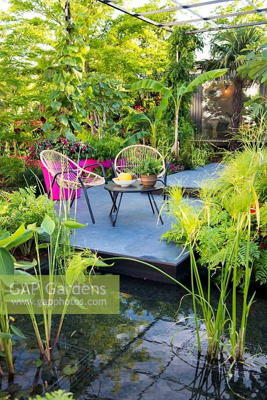 Seating area in the tropical style garden with aquatic planting including Cyperus and Thalia. B and Q Bursting Busy Lizzie Garden at RHS Hampton Court Palace Garden Festival Show 2018