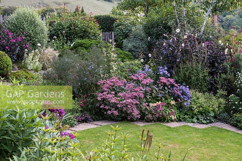 Lawn edged in borders of late-summer flowering perennials.