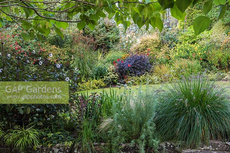 Lawn edged with colourful borders of flowering perennials.