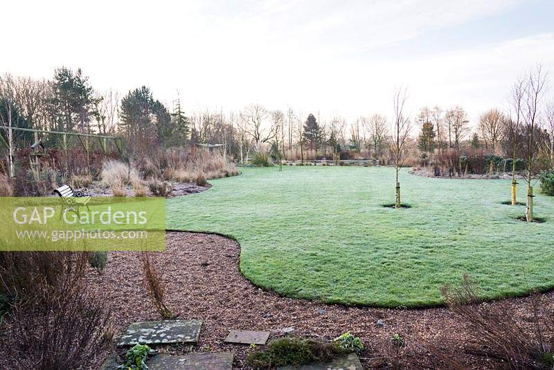 Curvaceous lawn framed with borders planted with grasses and evergreens including conifers and euphorbias at Ellicar Gardens, Doncaster, UK.
