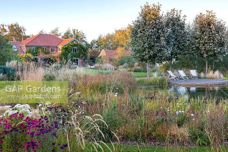 View across natural pond and informal borders at Ellicar Gardens, Doncaster, UK.