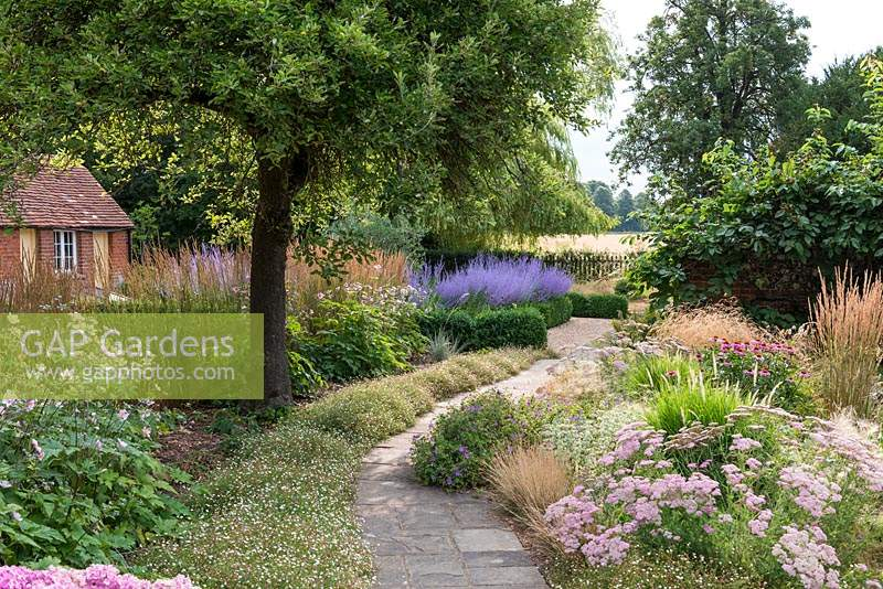 Path leads to parterre with perovskia,  passing mixed summer border