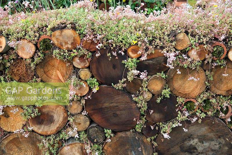 A log wall and insect haven in the Very Hungry Caterpillar Garden, RHS Tatton Park Flower Show, 2019.