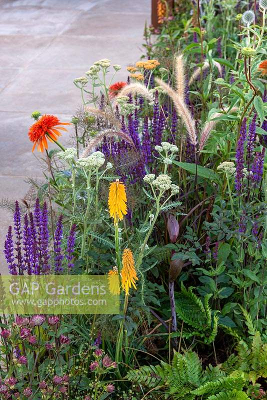 Colourful summer border -  The Lower Barn Farm Garden, RHS Hampton Court Palace Garden Festival 2019