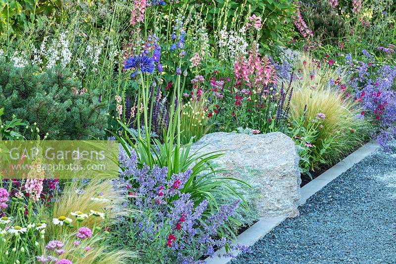 Use of stone in the garden - a grey gravel path is neatly edged with a contemporary style white stonework and a large natural stone, with a border of colourful summer planting including Nepeta, Agapanthus, Digitalis, Salvia and Stipa tenuissima. RHS Hampton Court Palace Garden Festival 2019.Sponsor: Viking Cruises