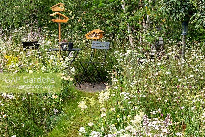 A seating area in a naturalistic garden with wild flowers, providing a habitat for wildlife, birds, insects and bees. RHS Hampton Court Palace Garden Festival 2019.