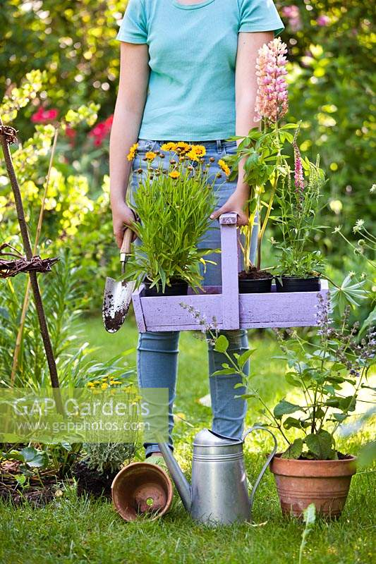 Girl holding a trug of young plants in a summer garden