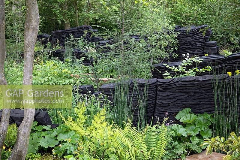View of burnt oak structures representing rock formation and lush green planting. Sponsor: M and G Investments. Garden: The M and G Garden. Chelsea Flower Show 2019.