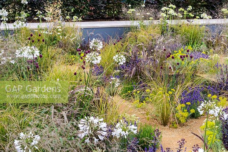 Mixed planting among  water pools - The One Show Garden - RHS Hampton Court Flower Show 2014