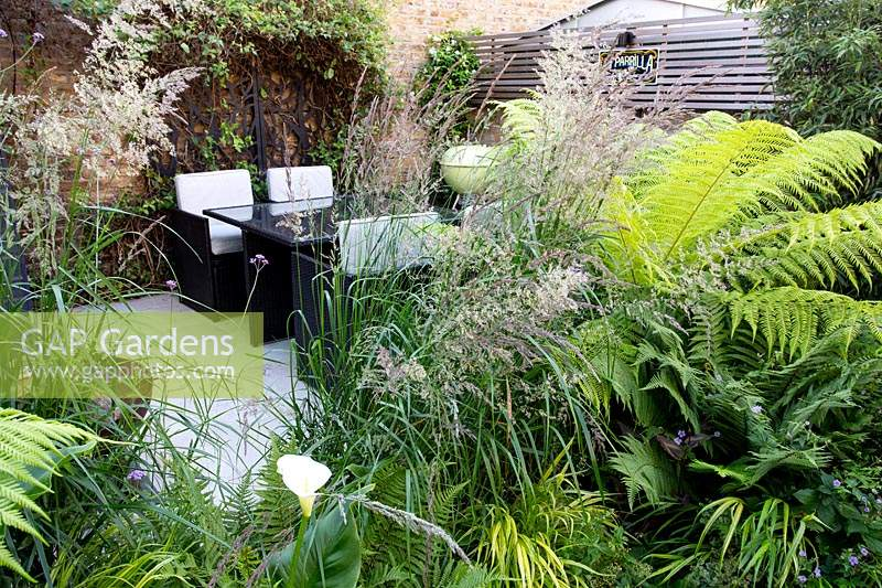 View towards a patio and dining area in small shade tolerant garden in London with a green theme. Planting includes Calamagrostis x acutiflora Karl Foerster, Dicksonia antarctica, Zantedeschia aethiopica.