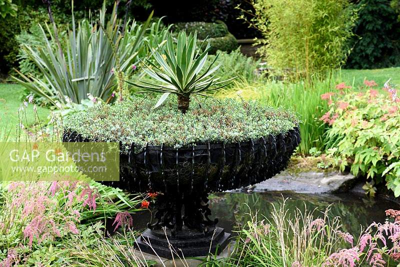 Decorative wrought iron basket planter containing hebe and a variegated yucca in the pond in the Old Orchard at York Gate Garden, Adel in July.