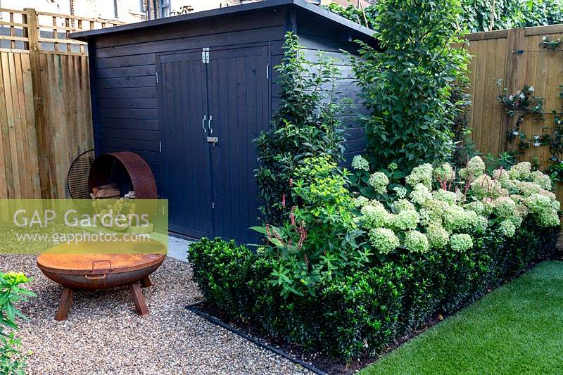 Gravel patio in West London garden with fire pit and grey wooden shed and metal hoop wood store - planting includes Hydrangea paniculata Little Lime, Persicaria Orange Field, Carpinus betulus Frans Fontaine, Euonymus Jean Hughes.