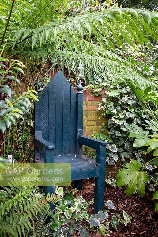 Modern cottage garden in West London. With tree fern Dicksonia antartica overhanging a green painted wood throne.
