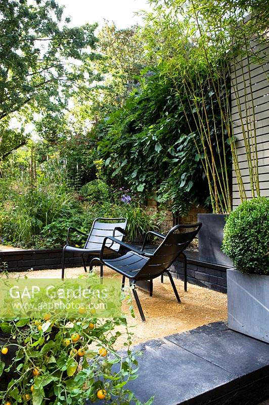 View of modern black chairs on a raised terrace with planting of Bamboo in a concrete container behind