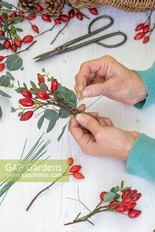 Woman wiring bundles of rosehips and Eucalyptus foliage ready for making a wreath.