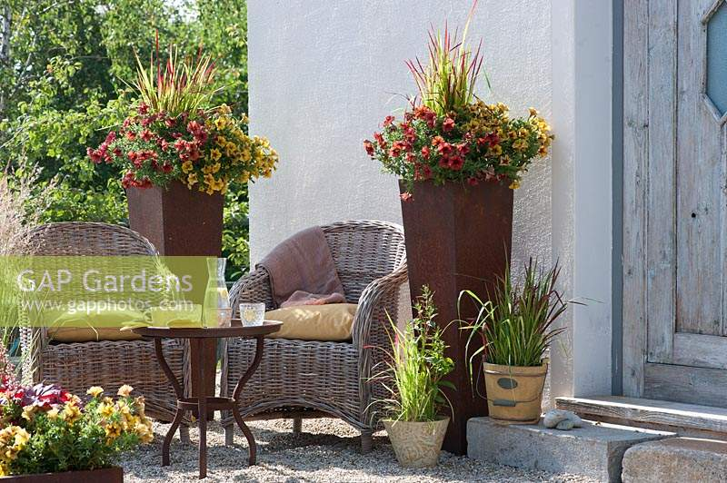 Sitting area outside house with wicker chairs and containers. Petunia Beautical 'Cinnamon' and 'Caramel' with Imperata cylindrica 'Red Baron' - Japanese red grass in tall rust pots