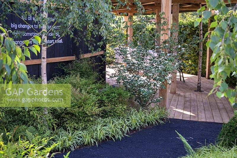 Black path made from industrial furnaces by product with shade planting of Nandina, flowering Cornus kousa var. chinensis and Birches - The Smart Meter Garden - RHS Hampton Court Palace Garden Festival 2019.