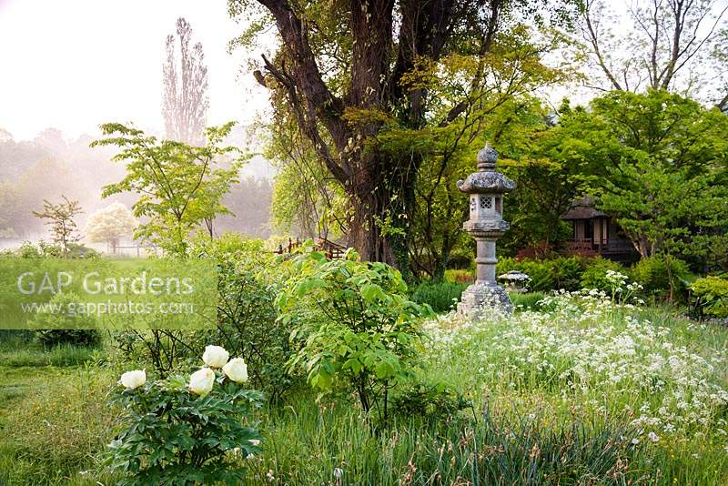 Gap Gardens Stone Temple Lanterns Surrounded By Cow Parsley And