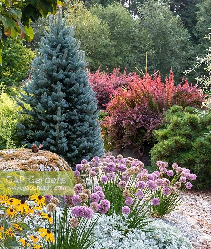 Gap Gardens A Deer Resistant Drought Tolerant Garden Border