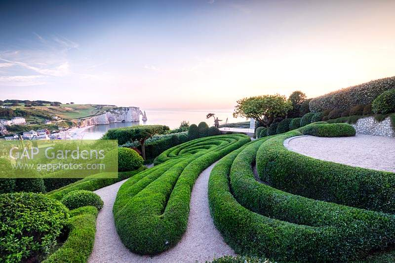 View over sculpted Phillyrea angustifolia spirals and view to the white cliffs and sea beyond.