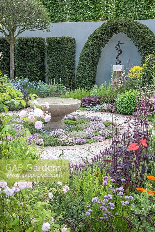 Contemporary Apothecary Garden with large water-basin. Edible herb-lawn of Thymus serpyllum varieties syn. thyme. Sculpture of Aesclepius' staff, the symbol of healing, framed by topiary Taxus baccata syn. clipped yew. Allium schoenoprasum syn. chives. Rosa syn. rose. Papaver rhoeas syn. field-poppy. Digitalis syn. foxglove. Lavandula viridis syn. green lavender, lemon lavender. Lavandula dentata