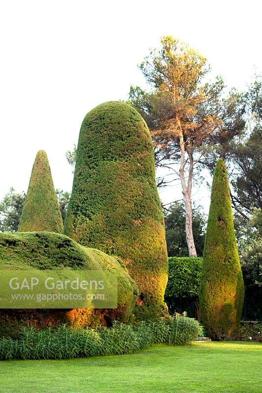 Large topiary forms