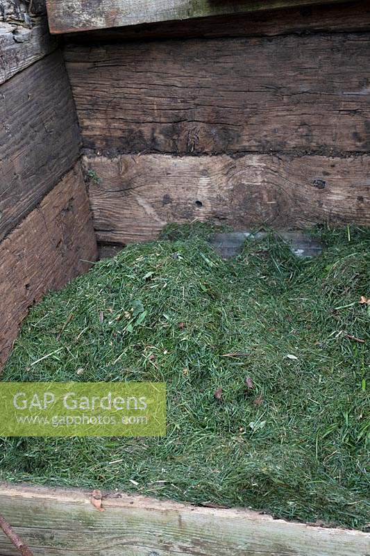 Grass clippings on a compost heap.