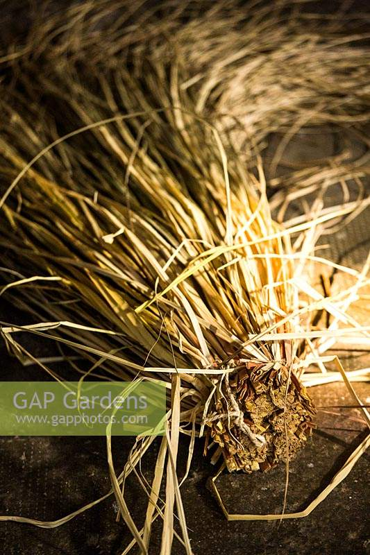 Preparing dried grasses used for making ornaments