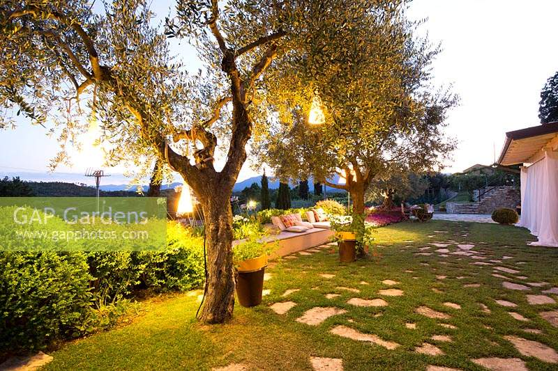 After sunset: the outdoor lounge with illuminated trees