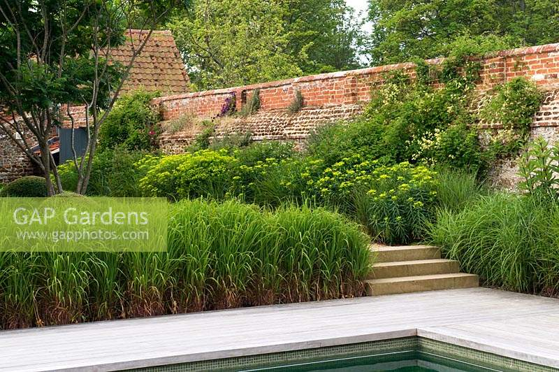View from poolside with ornamental grass, up steps to a perennial flower border in front of brick wall