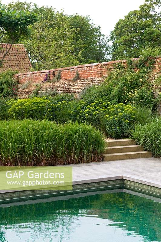 Edge of swimming pool with paved poolside and steps up to a walled garden with borders of ornamental grasses and perennial flowers
