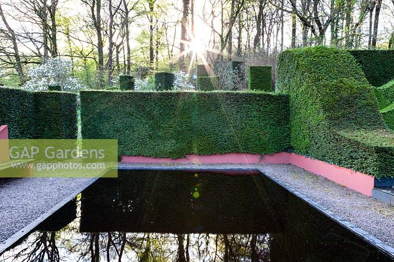 The Reflecting Pool and view to the wood and Wild Garden.  Hedges and columns of Taxus baccata 'Yew'.