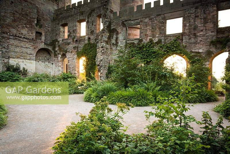 The Garden in the Ruins at Lowther Castle, planted with a range of shade loving plants including Lamium orvala, thalictrum and Hakonechloa macra, the Japanese forest grass.