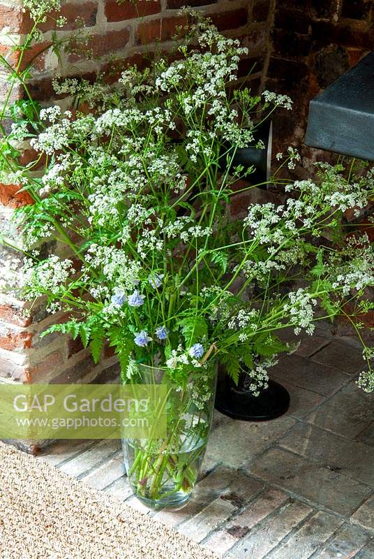 Vase of  Cow Parsley - Anthriscus sylvestris - in inglenook fireplace