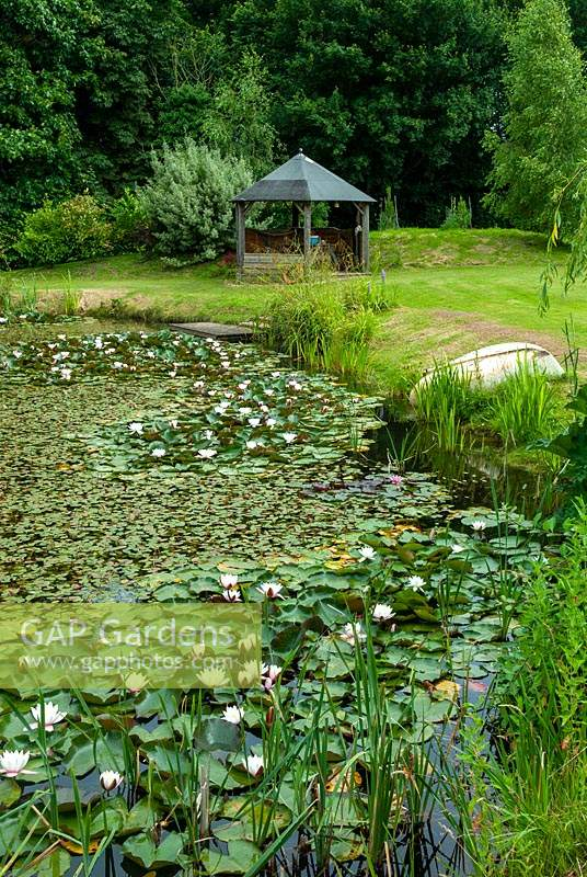 Large pond with Water Lillies, marginal plants, a small jetty, dinghy on bank and gazebo beyond - Open Gardens Day, Kelsale, Suffolk