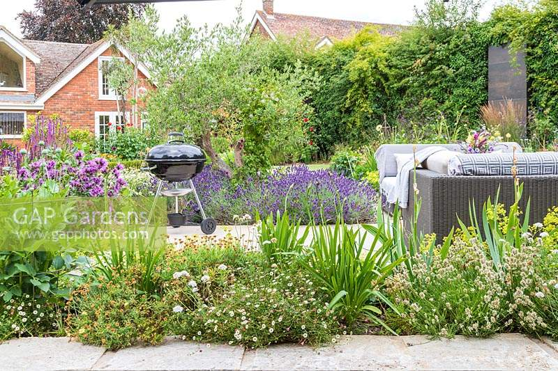 View to patio with barbecue and sofa over border with mixed planting including Erigeron
