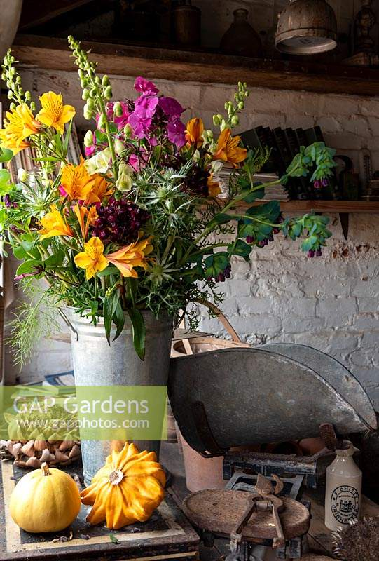 A bucket of cut flowers include Alstroemeria, Erigerons,  Phlox, Sweet Williams, Monkshood  and Cerinthe major by the window in the potting shed.