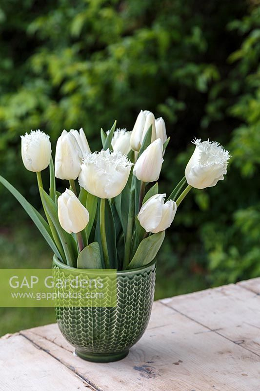 Spring arrangement in green glazed pot with mixed white Tulips