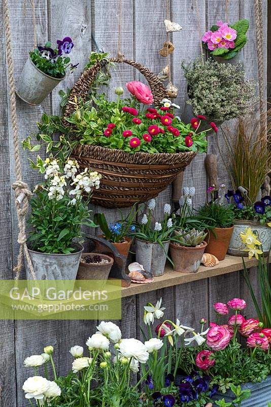 Display of containers with a wall mounted basket planter.