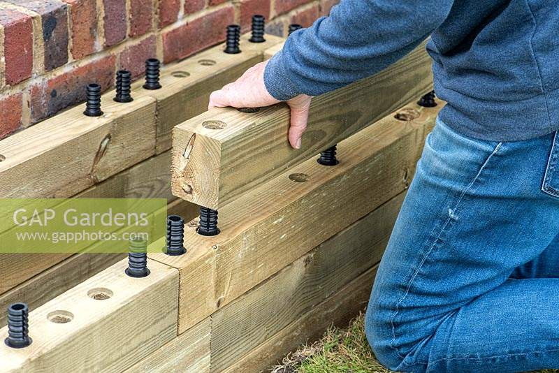 Person building raised bed: using the dowels to hold the timbers in place.