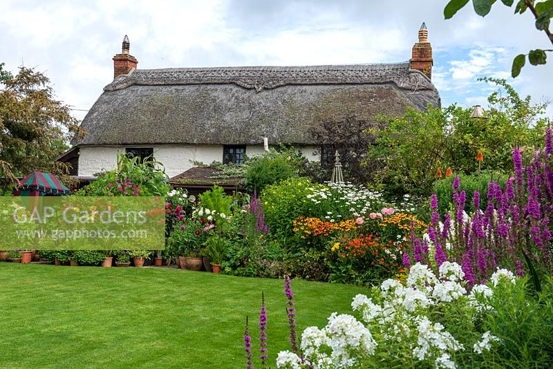 Flowing borders of traditional cottage garden favourites and pots of dahlias embrace a 250-year-old thatched cottage.