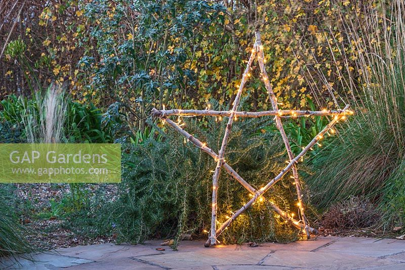 Illuminated natural star with fairylight made from lengths of Hazel sticks, in front of shrub border