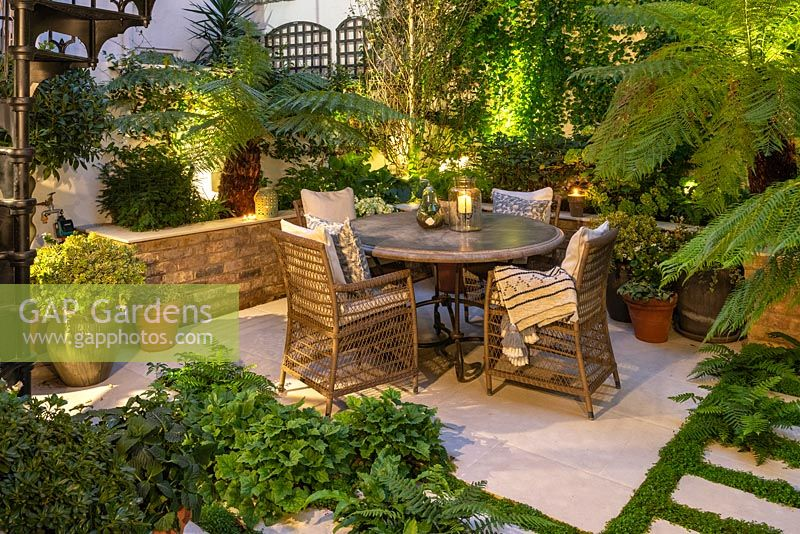 A walled courtyard with outdoor dining area lit at night, illuminating Dicksonia antartica - Tree Fern, Hydrangea and Hosta in raised beds