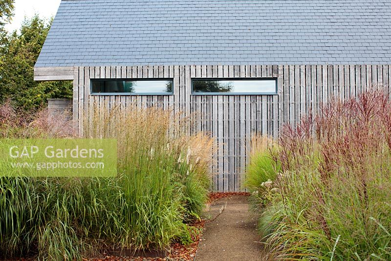 Double border of tall grasses such as Calamagrostis 'Karl Foerster' at entrance to a barn conversion